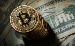 Elon Musk: Bir şartla Bitcoin'e döneriz