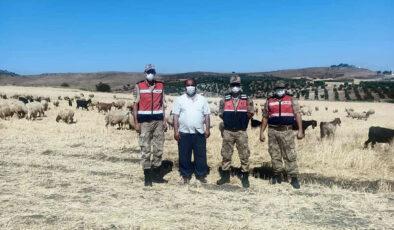 Kilis'te kayıp çoban ve hayvanları JASAT buldu