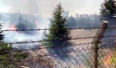 Ankara Atatürk Orman Çiftliği'nde yangın
