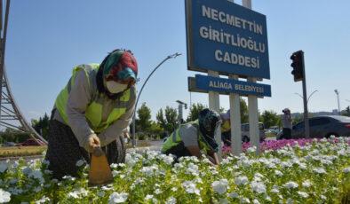 İzmir Aliağa çiçeklerle renkleniyor