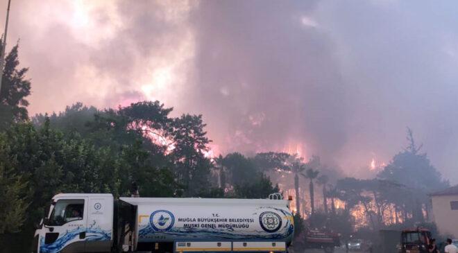 Muğla Marmaris'teki yangında son durum