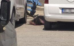 Nusaybin'de canlı bomba etkisiz hale getirildi!